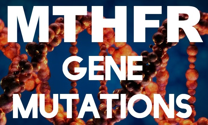 mthfr-mutation